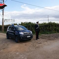 Antimafia Azienda Agricola Mottola