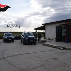 Antimafia Azienda Agricola Mottola foto