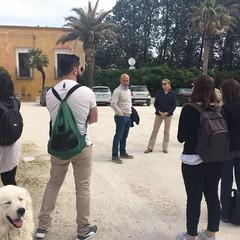 Cerignola Azienda Santo Stefano dei Conti Pavoncelli