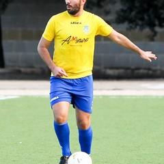Domenico Torelli