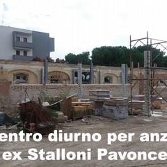 es stalloni Pavoncelli