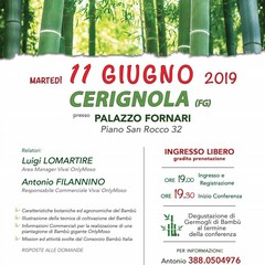 Locandina coltivazione Bamb
