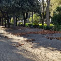 Villa di Cerignola abbandonata foto