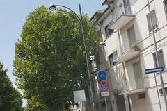 A Cerignola gli alberi entrano nelle case dei cittadini