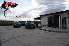 DDA di Bari alla Azienda Agricola Mottola