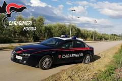 Raffica di controlli dei Carabinieri, due fermi e due arresti