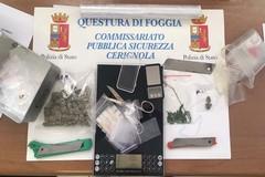 Detenzione ai fini di spaccio di sostanza stupefacente, arrestato 19enne cerignolano