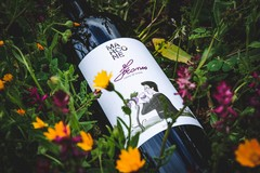 """Dalla """"Pietra di Scarto"""" nasce """"Franco"""", il vino dedicato a Francesco Marcone"""