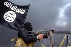 Terrorismo in Puglia 1: Cosa sono l'ISIS e Boko Haram?