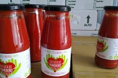 La cooperativa Altereco produrrà anche quest'anno il pomodoro biologico da salsa