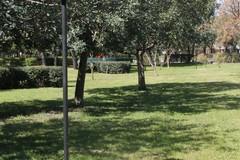 Orta Nova, gravi danni alla Villa Comunale