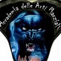 Carmine Carlucci e Matteo Dimonte: due cerignolani protagonisti ai Mondiali di Arti marziali
