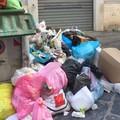 """Rifiuti, Fratelli d'Italia Cerignola: """"Tre emergenze che hanno un solo nome"""""""