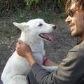 Cani abbandonati, la storia di Giuseppe & Libera
