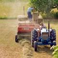 Coldiretti Puglia, la sfida del cibo riparte dai contadini
