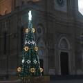 Lepore: la bellezza dell'albero in Piazza Duomo e la città ricca di eventi.