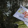 Libera Puglia su scioglimento del Comune di Cerignola