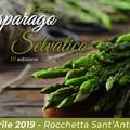 Rocchetta Sant'Antonio: la Festa dell'Asparago tra sapori, gusti e tradizioni contadine