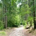 Natura, sport, avventura e molto altro: al via le adesioni per un campo scuola a Vieste