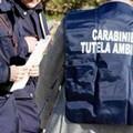Blitz a Stornara: sequestrati autoparchi e autofficina