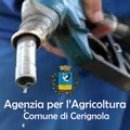 Assegnazione suppletiva carburante ad accisa agevolata