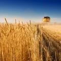 """""""Agricoltura multifunzionale - Il futuro dell'ambiente rurale e le opportunità per le imprese"""""""