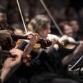 Concerti di musica sacra nel centro della Città