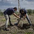 """""""Pietra di Scarto"""" e """"ZeroCO2"""" insieme per piantare alberi ad alto impatto sociale"""