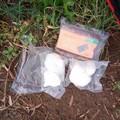 Sorpreso e arrestato un giovane con 200 grammi di cocaina pura.