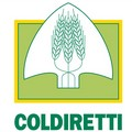 Biologico: Coldiretti Puglia, al via anche in Puglia rotazione colturale per grano a tutto bio.