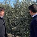 Coldiretti Puglia: al palo istruttorie PSR