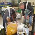 Cerignola: sequestrato opificio che miscelava olio di semi a clorofilla spacciandolo per olio extravergine di oliva -FOTO-