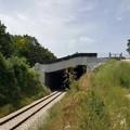 Circolazione ferroviaria sospesa quest'estate sulla linea Potenza-Foggia.
