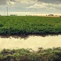 Agricoltori ostaggi del clima e del rischio idraulico