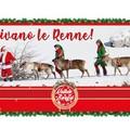 """In terra vecchia arrivano le renne finlandesi per la chiusura del  """"Natale al Borgo """""""