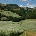 """Due tappe foggiane per il  """"Cammina Italia CAI 2019 """""""