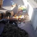 A proposito di immondizia per strada: l'accorato post di Antonio Lionetti