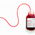 Fidas Zapponeta: giornata di raccolta sangue per far fronte all'emergenza di questo periodo estivo.
