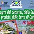 """SOS Cerignola: il 25 Aprile  """"Commemorazione dell'Eccidio di Vallecannella """" e  """"Sagra del pecorino, della fava e dei prodotti delle Terre di Cerignola """"."""