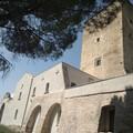 """""""L'Arte di condividere"""", visita guidata a Torre Alemanna per conoscere la nostra storia"""