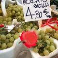 """Cia Puglia: """"Uva, al banco prezzi in altalena ma compensi da fame agli agricoltori"""""""