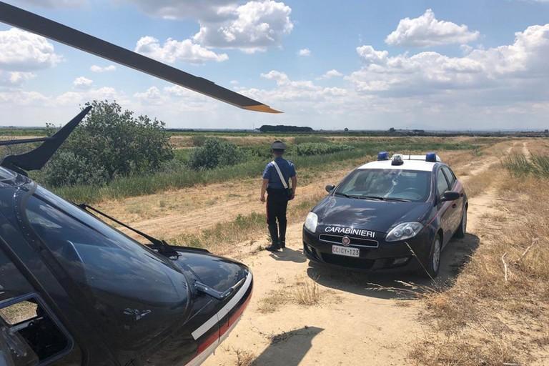 Controlli rurali Carabinieri Cerignola