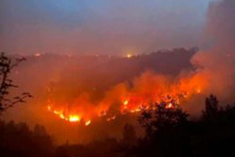 Incendio Gargano