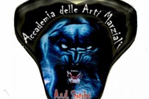 Accademia Arti Marziali